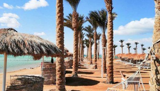 Egipt  – hotele sieci Sunrise